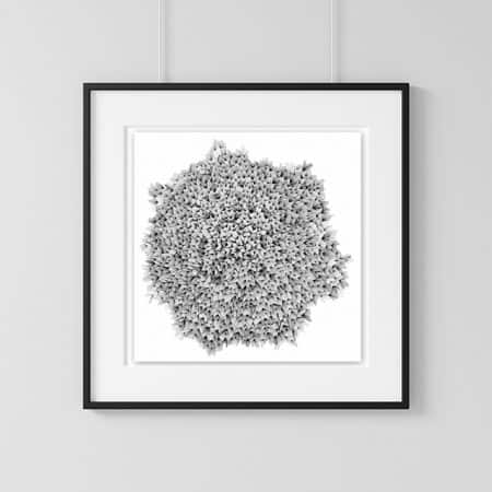 Home decor wall art Dandelion