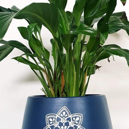 Zen blue plant pot