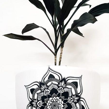 mandala plant pot